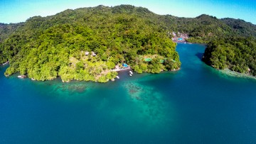 Lembeh Strait Dive Resort & Spa